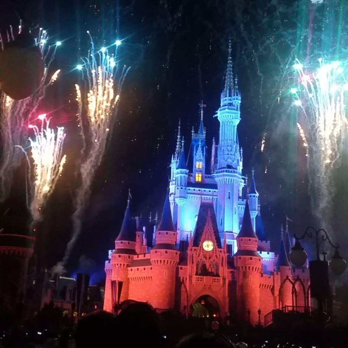 Fireworks at Disney World